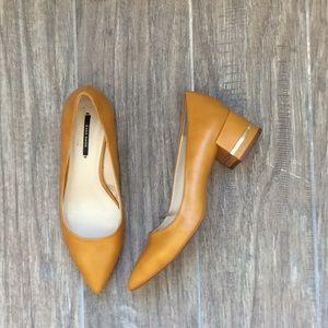 Zara Pointed Toe Shoe with Block Heel